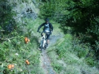 Mountain Bike e Bici da strada